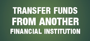 transfer funds from another financial institution